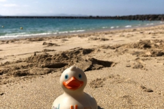 travel-duck-strand-playa-blanca2