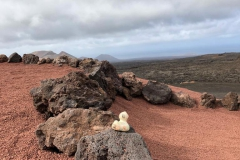 travel-duck-timanfaya