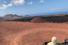 travel-duck-timanfaya3