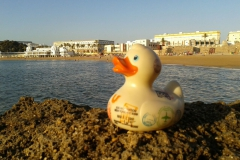 travel-duck-cadiz-10
