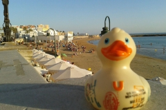 travel-duck-cadiz-11