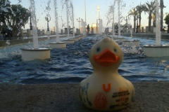 travel-duck-cadiz-17