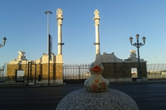 travel-duck-cadiz-19
