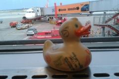travel-duck-cadiz-2