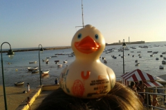 travel-duck-cadiz-6