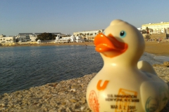 travel-duck-cadiz-8
