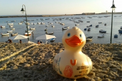 travel-duck-cadiz-9