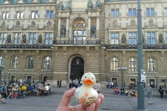 travel-duck-hamburg-16