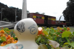 travel-duck-kuba-7