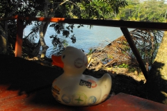 travel-duck-kuba-8