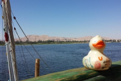 travel-duck-luxor-10