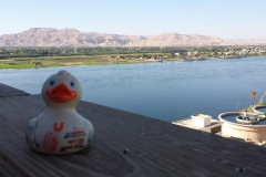travel-duck-luxor-15