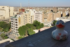 travel-duck-luxor-16