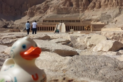 travel-duck-luxor-3