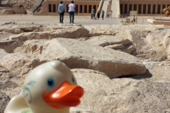 travel-duck-luxor-4