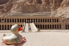 travel-duck-luxor-5