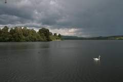 217_Loch-of-Lowes