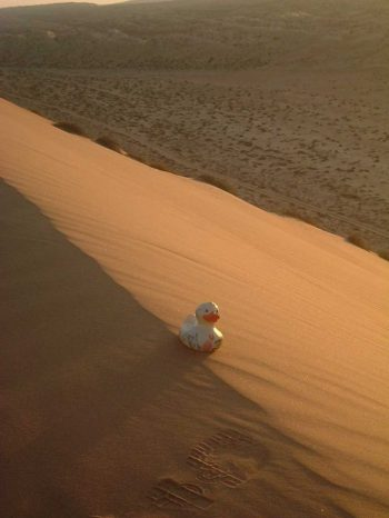 travel-duck-oman-srilanka (2)
